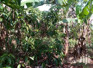 Land In Mukono Nakasajja For Sale | Land & Plots For Sale for sale in Central Region, Luweero