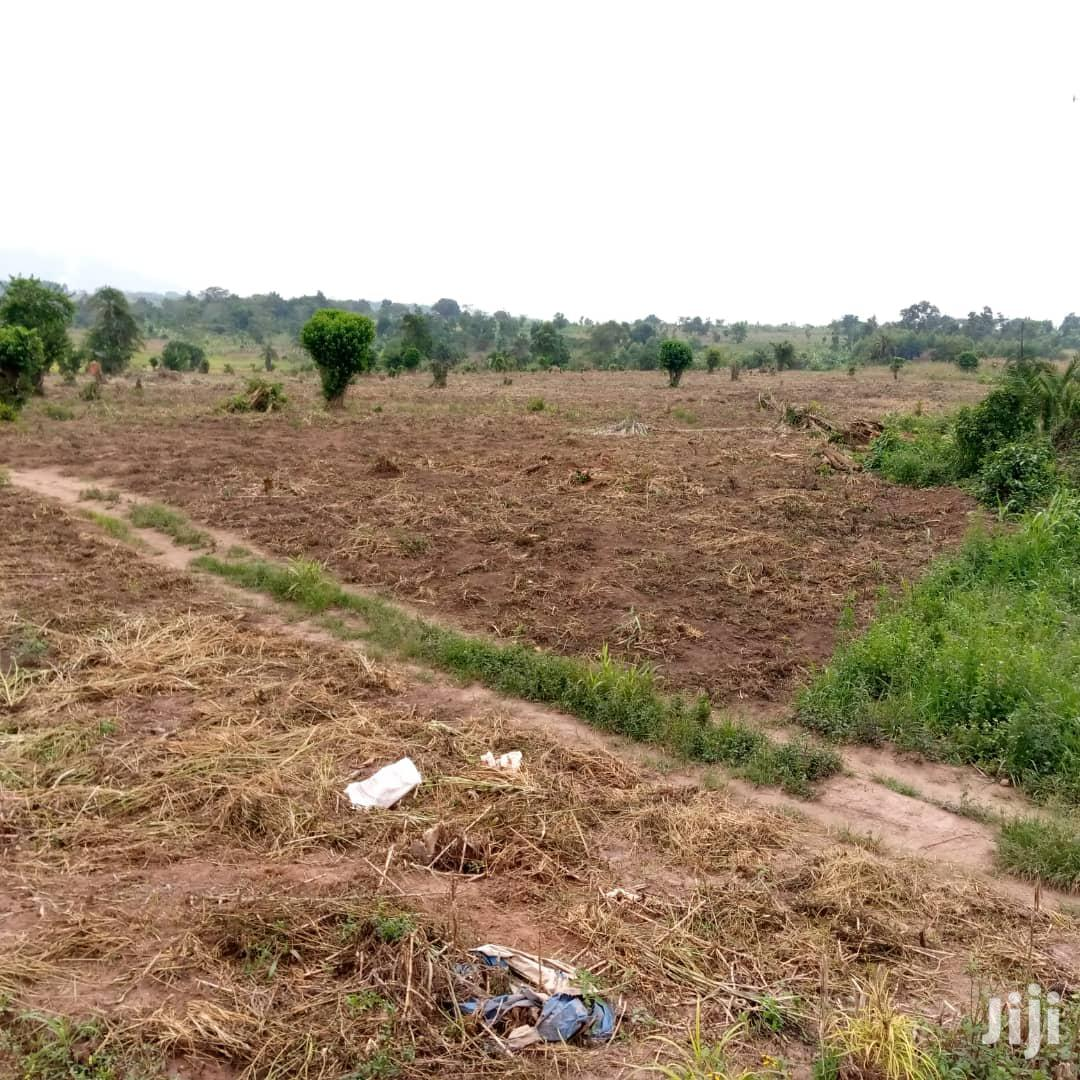 Land In Kasanda Mityana Road For Sale