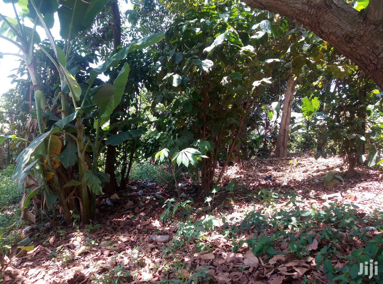 Land In Zirobwe Kikyusa For Sale