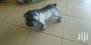 Bull Dogs Of Art And Craft Shipped And Good Looking | Arts & Crafts for sale in Central Region, Wakiso