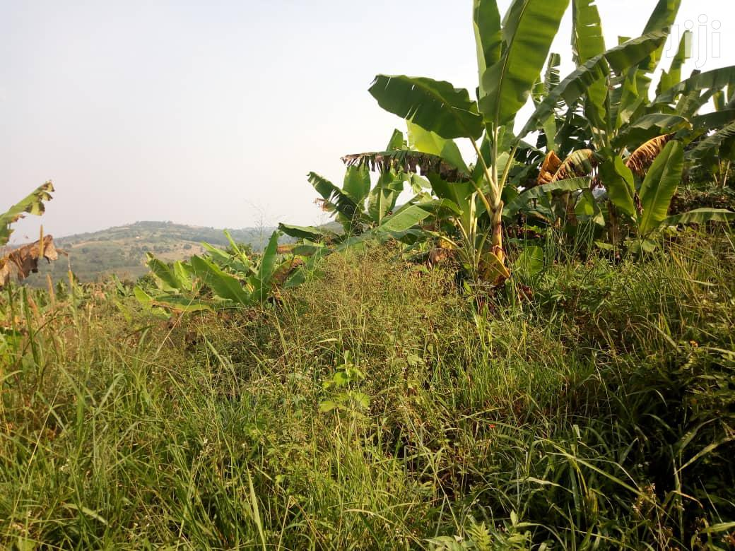 Archive: 750 Acres Land In Madudu Mubende For Sale