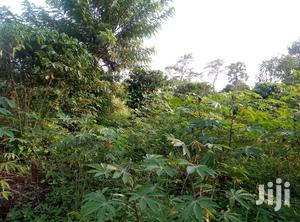 Land In Zirobwe Kikyusa For Sale | Land & Plots For Sale for sale in Central Region, Kampala