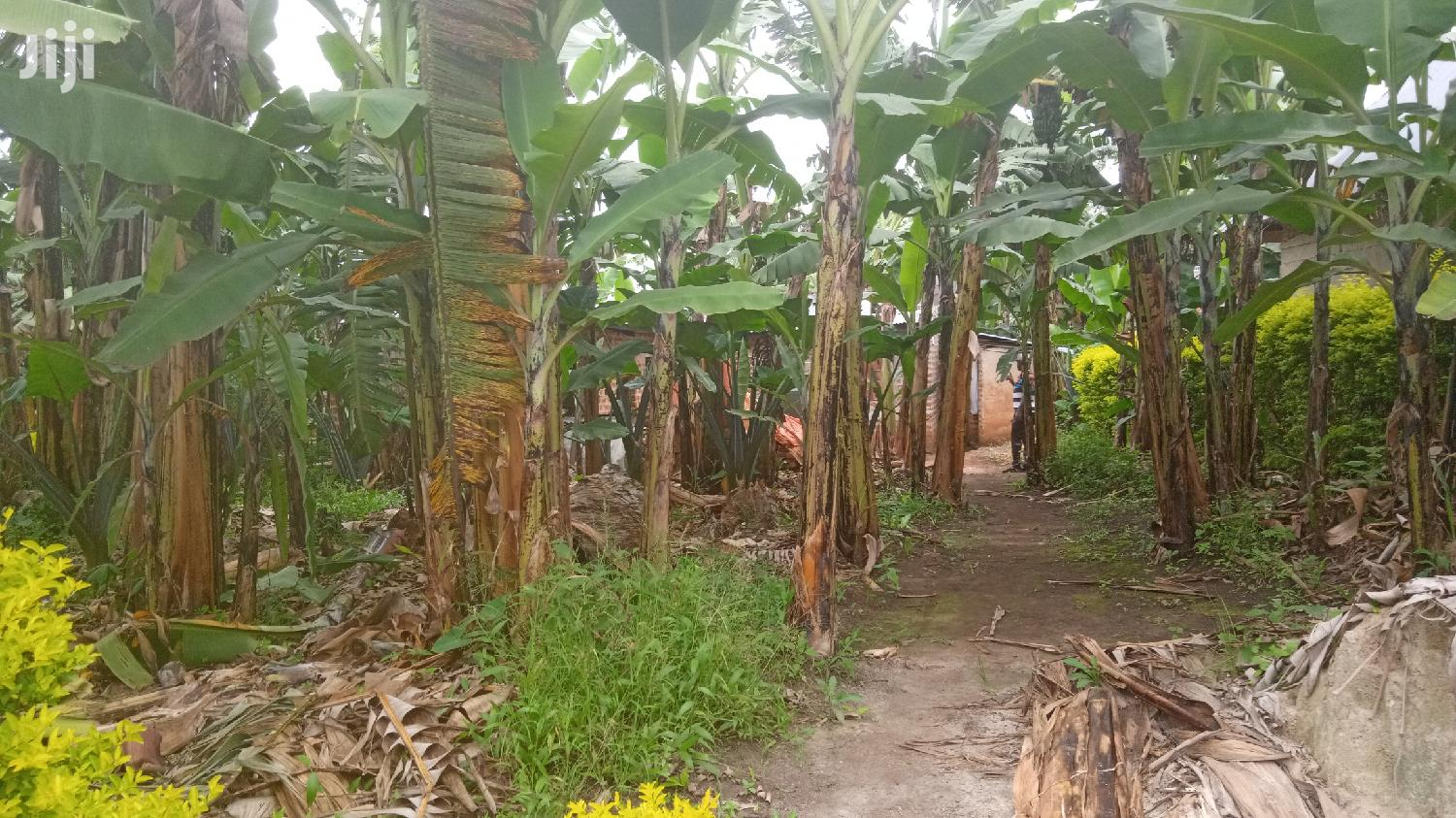 Residential House In Kitere For Sale | Houses & Apartments For Sale for sale in Kabalore, Western Region, Uganda