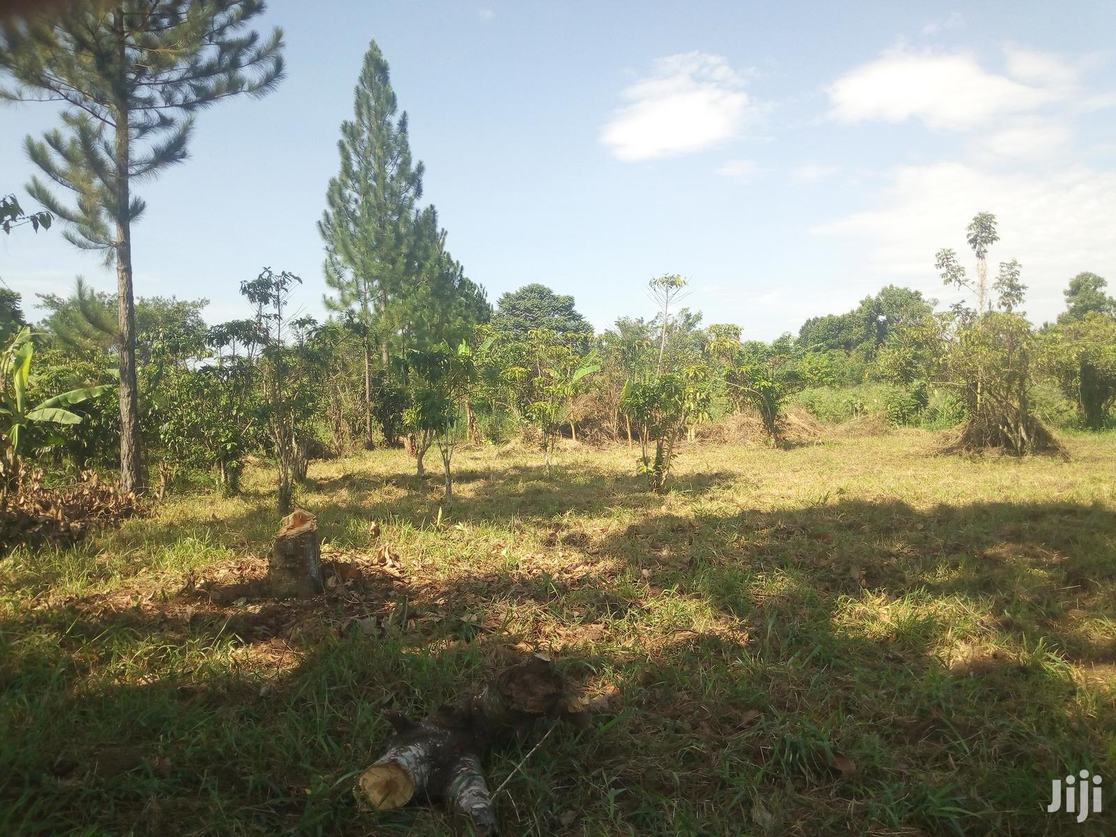 Private Land 5acres After Wobulenzi For. KATS DEO SURVEYS LTD | Land & Plots For Sale for sale in Luweero, Central Region, Uganda