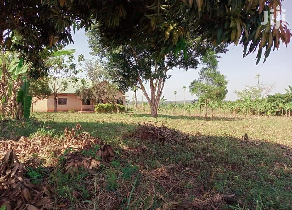 Affordable Land For Sale In Busika Town 30 Acres Of Land Each