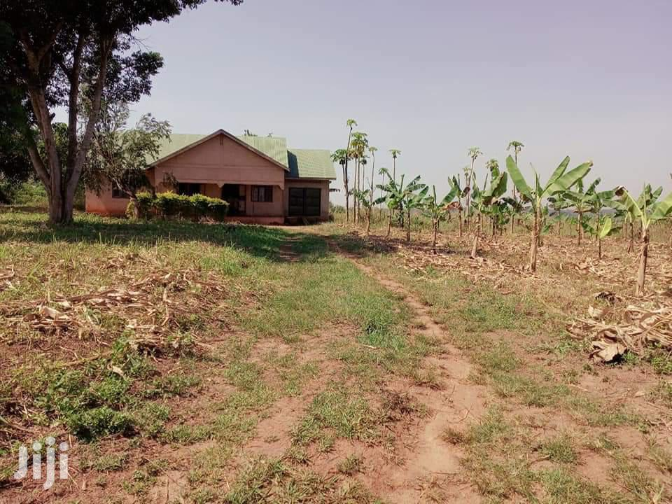 Affordable Land For Sale In Busika Town 30 Acres Of Land Each | Land & Plots For Sale for sale in Kampala, Central Region, Uganda