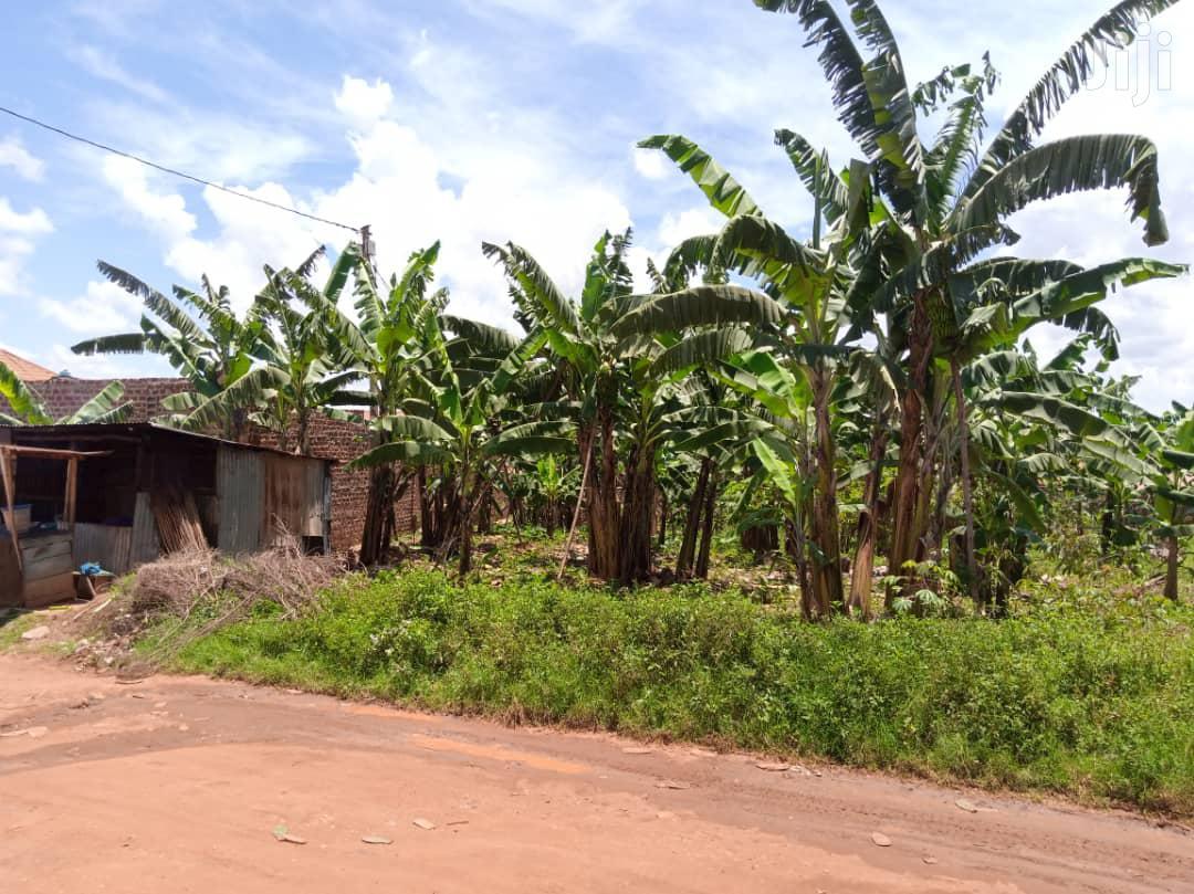 Agricultural Land In Mubende For Sale