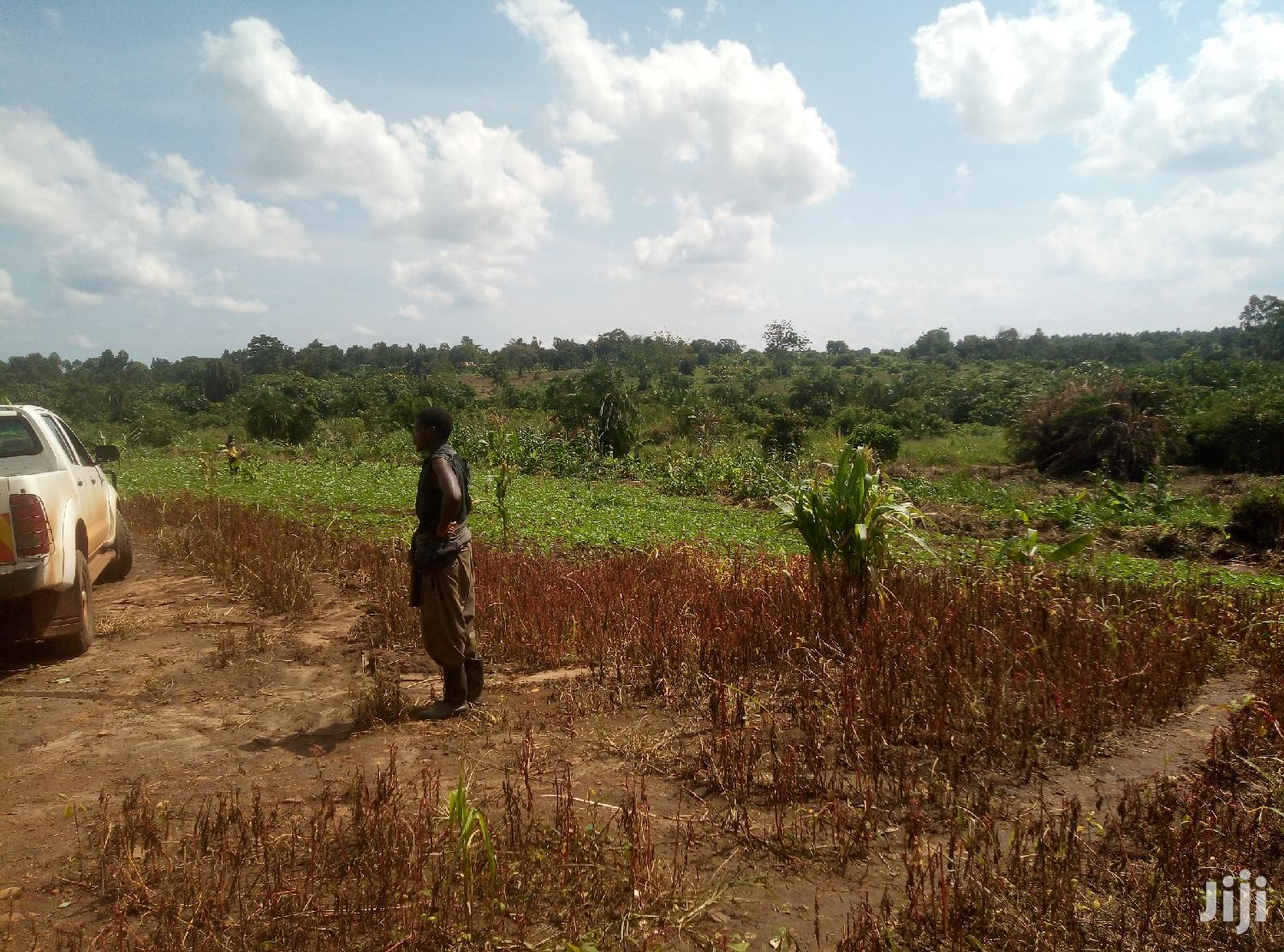 Land In Zirobwe Kamira For Sale