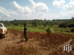 Land In Zirobwe Kamira For Sale