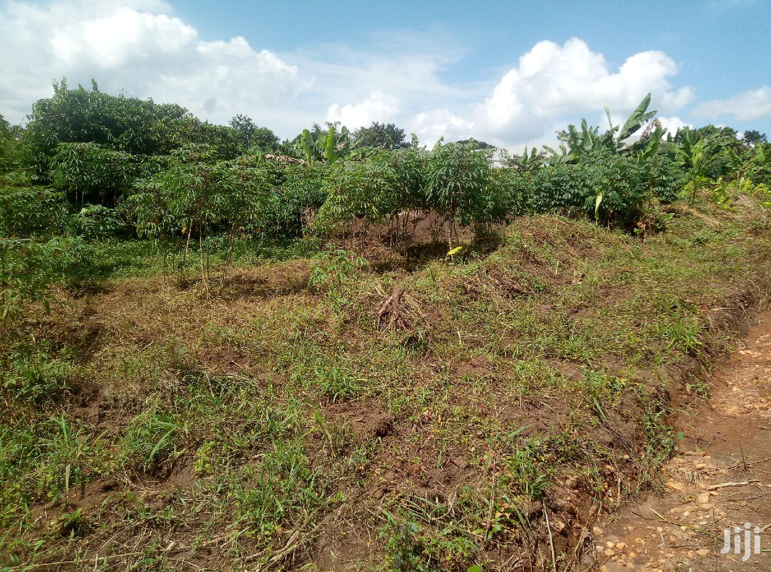 Land In Zirobwe Kamira For Sale | Land & Plots For Sale for sale in Kampala, Central Region, Uganda