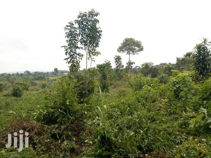 50 Acres Land In Kikyusa Kamira Zirobwe Road For Sale | Land & Plots For Sale for sale in Kampala, Central Region, Uganda