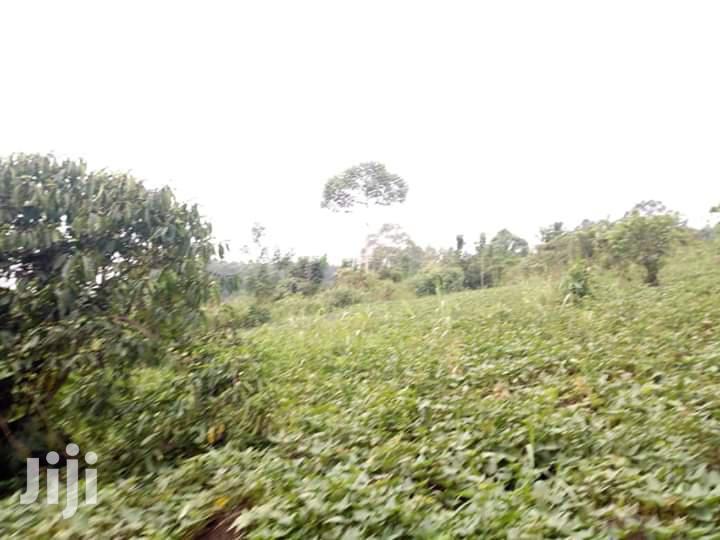 50 Acres Land In Kikyusa Kamira Zirobwe Road For Sale
