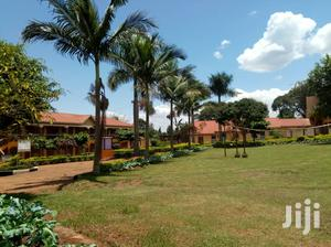 Both Secondary And Primary School On Quicksale In Luwero Many Students