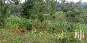 20 Acres Land In Zirobwe For Sale