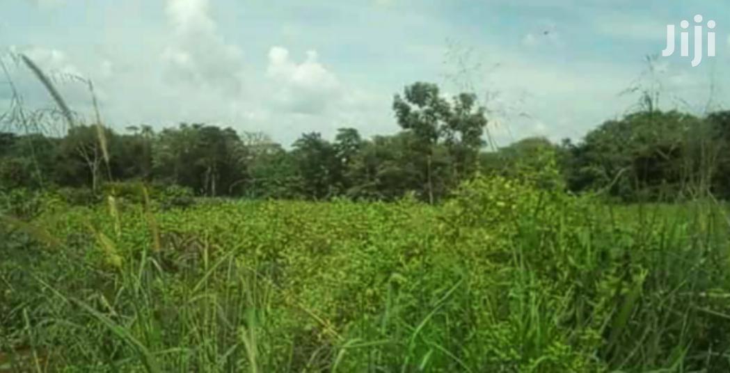 20 Acres Land In Zirobwe For Sale   Land & Plots For Sale for sale in Kampala, Central Region, Uganda