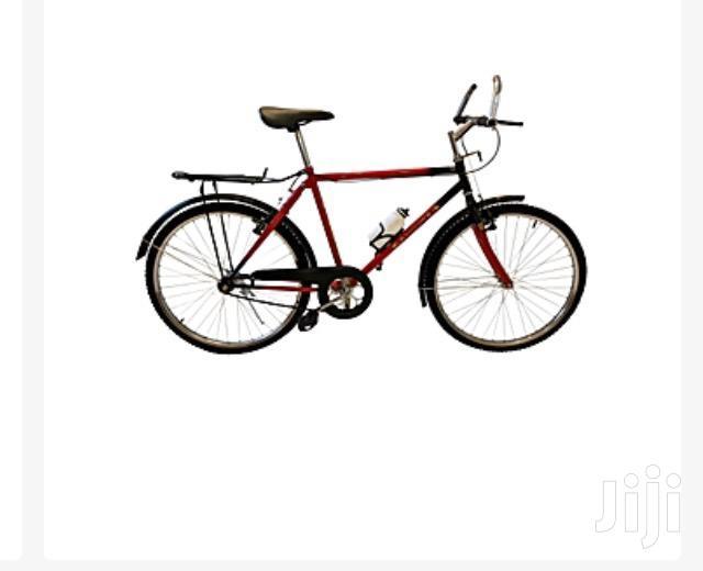 Phoenix Single Speed Bike