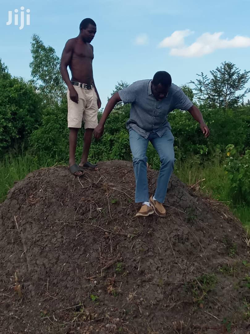 Ten Acres Of Land In Zirobwe Town For Sale