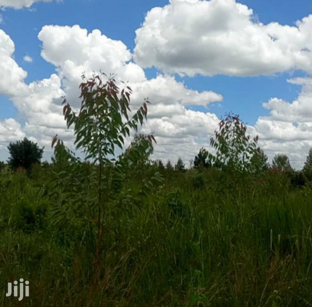 30 Acres Of Land In Zirobwe Town For Sale | Land & Plots For Sale for sale in Kampala, Central Region, Uganda