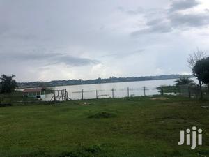 Registerd Landing Site Measuring Direct On Lake Rent Kasenyi | Land & Plots for Rent for sale in Central Region, Kampala