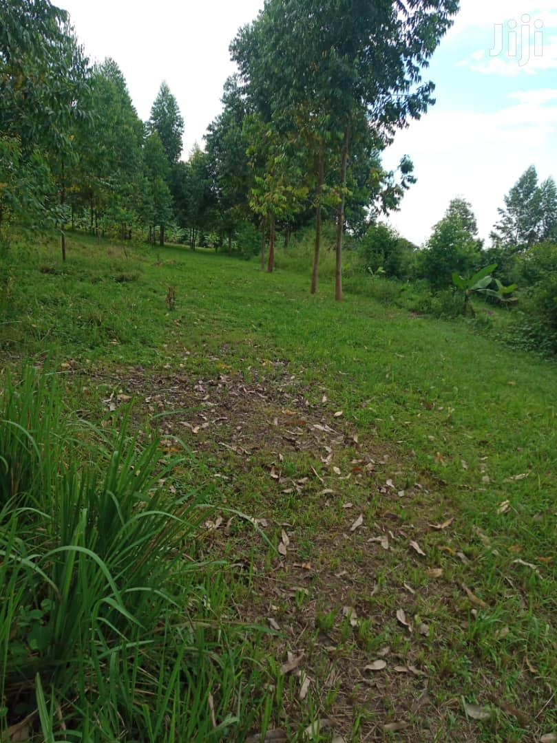 One Acre Of Land In Gayaza Busika Town For Sale