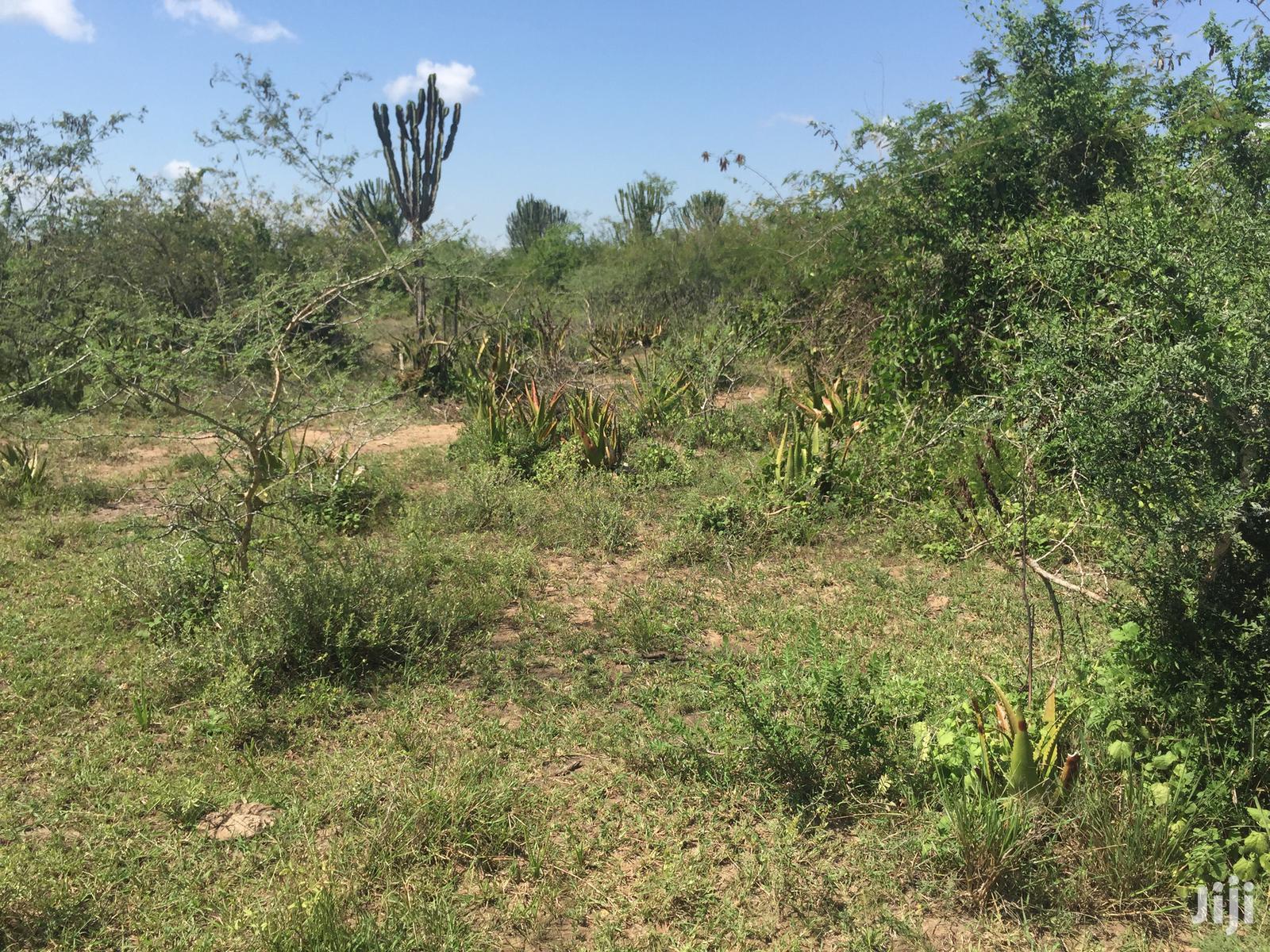 Agricultural Land For Sale | Land & Plots For Sale for sale in Soroti, Eastern Region, Uganda