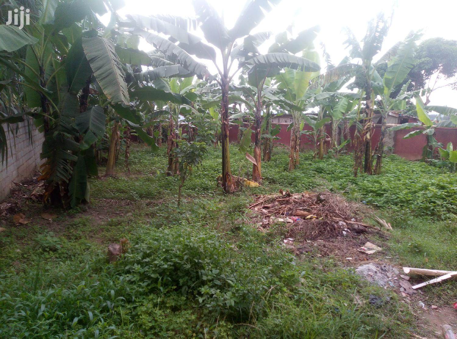 Spacious Land In Kira Town For Sale | Land & Plots For Sale for sale in Kampala, Central Region, Uganda