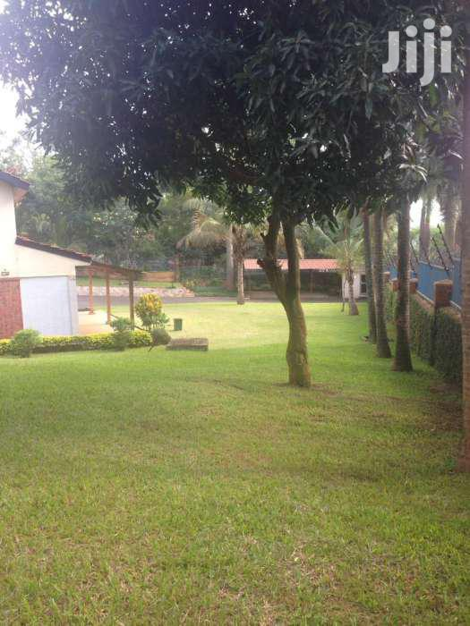 Nice  Office Space  For Rent For Rent In Nakasero | Houses & Apartments For Rent for sale in Kampala, Central Region, Uganda