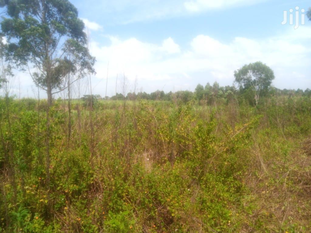 Farmland At Nazigo Kayunga For Sale