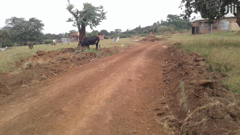 Entebbe Road Genuine Plots for Sale
