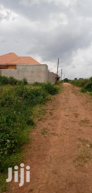 Residential Plots 50/100 Plots Located At Mukono 2