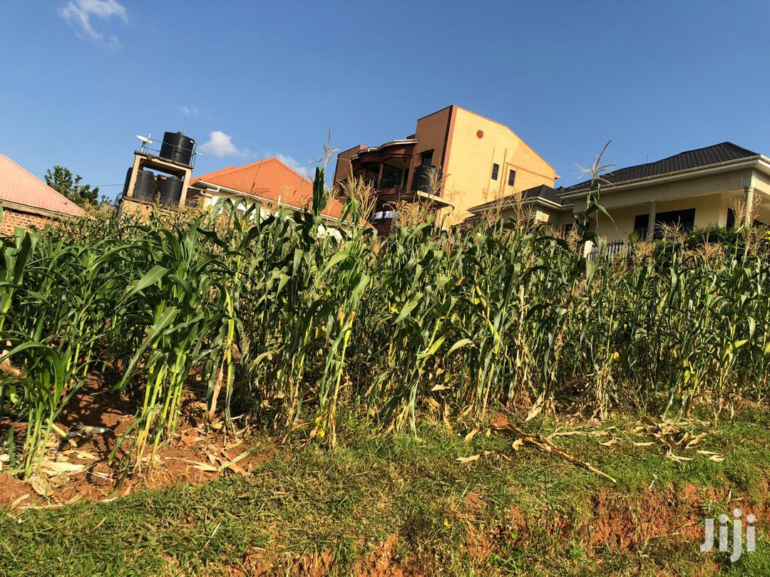 Mukono Plot Estate for Sale With Ready Land Title