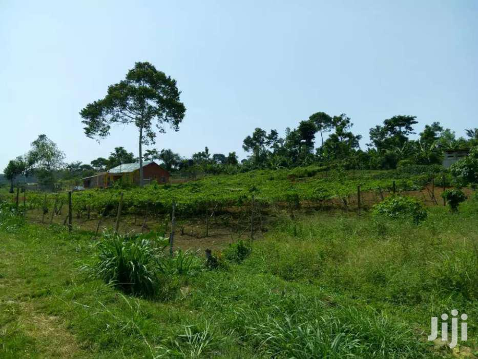 Farm Land 16.5 Acres In Mukono | Land & Plots For Sale for sale in Kampala, Central Region, Uganda