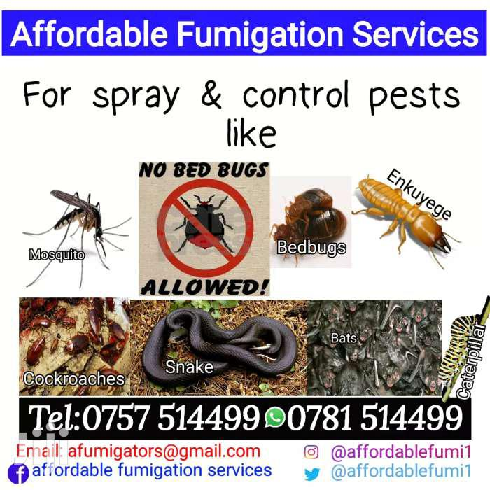 Fumigation Services And Pest Control