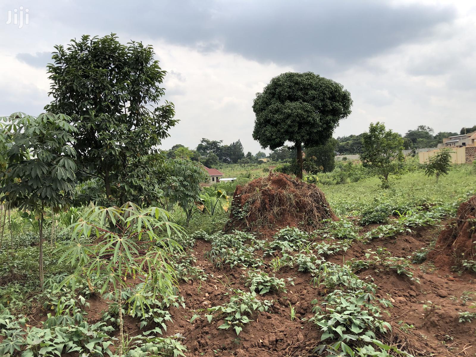 Kira Beautiful Plot Near the Main Road on Quick Sale   Land & Plots For Sale for sale in Kampala, Central Region, Uganda