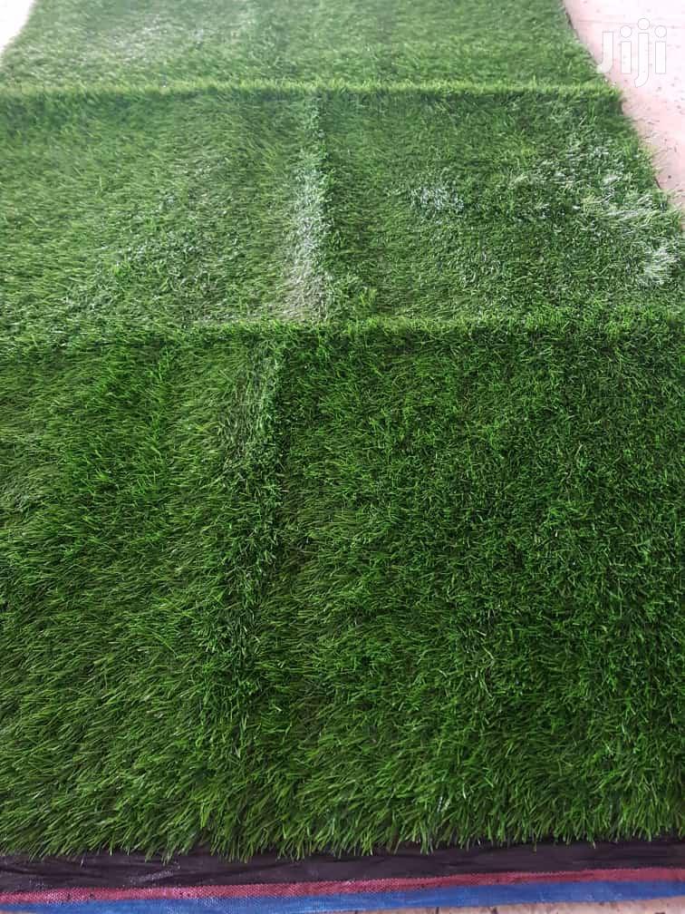 Grass in Kampala - Garden,