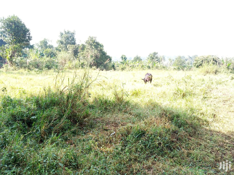 Estates Matugga Bubale for Kats and Deo Surveys LTD | Land & Plots For Sale for sale in Wakiso, Central Region, Uganda