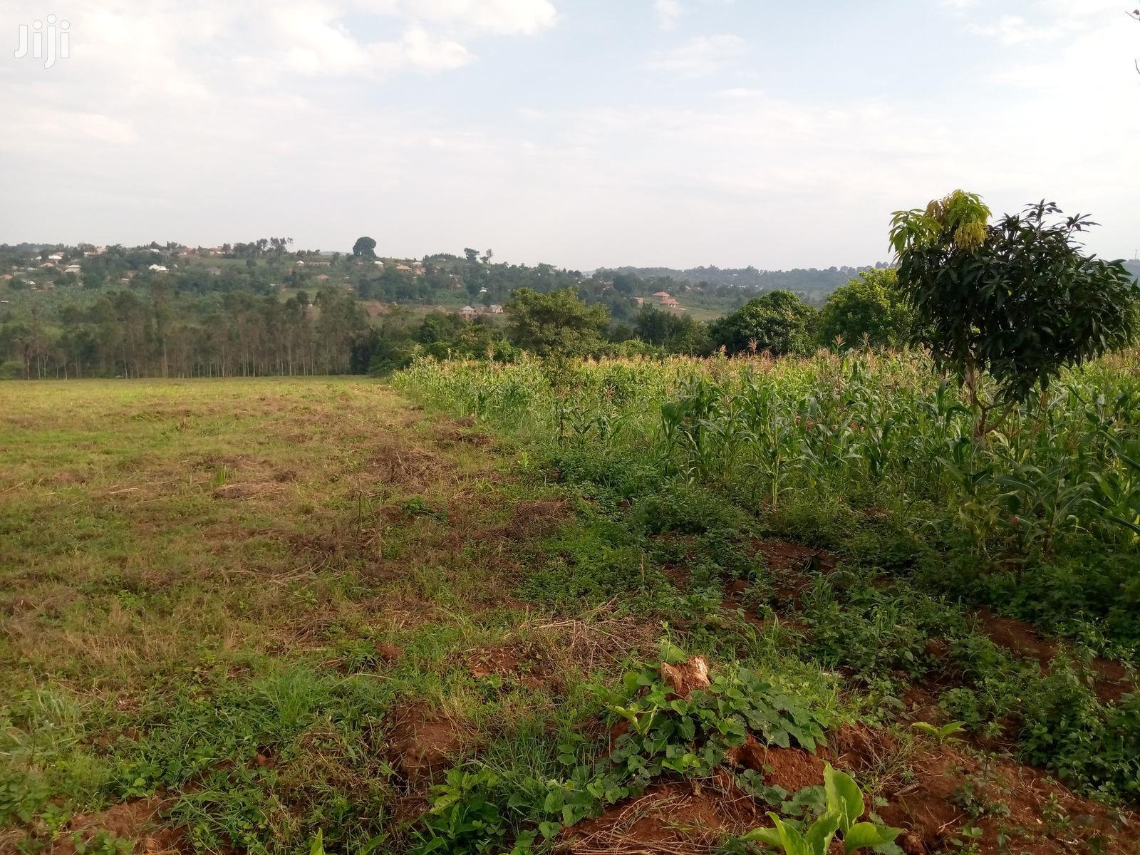 Archive: 50x100 Titled Plots in Kitende Kitovu Entebbe Rd 2km Off Mai