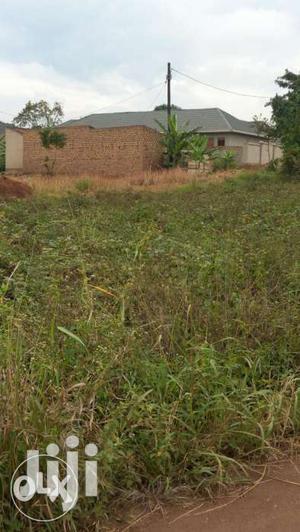 Gayaza Nakwero:16 Decimals For Sale