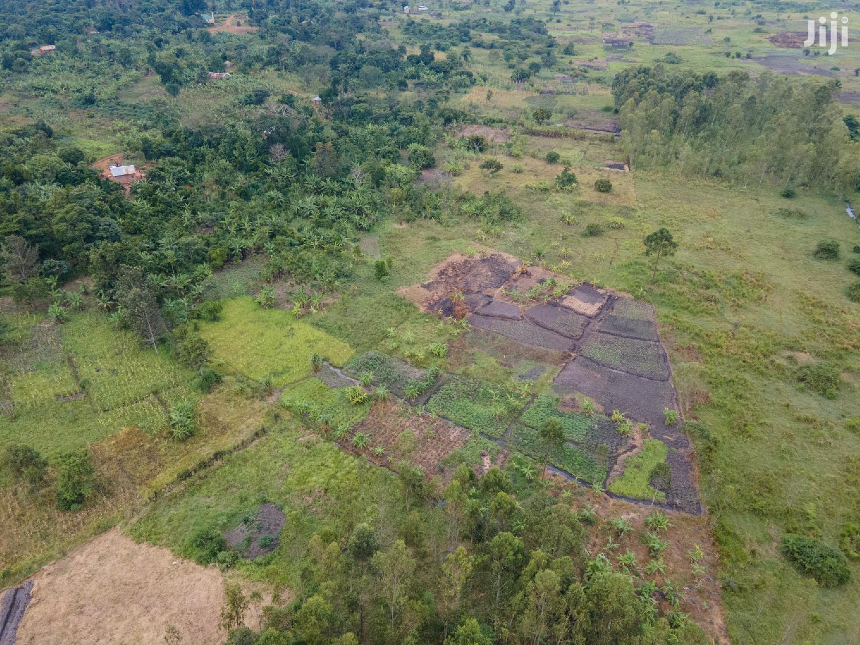 Farmland Land In Zirobwe Gayaza Road For Sale