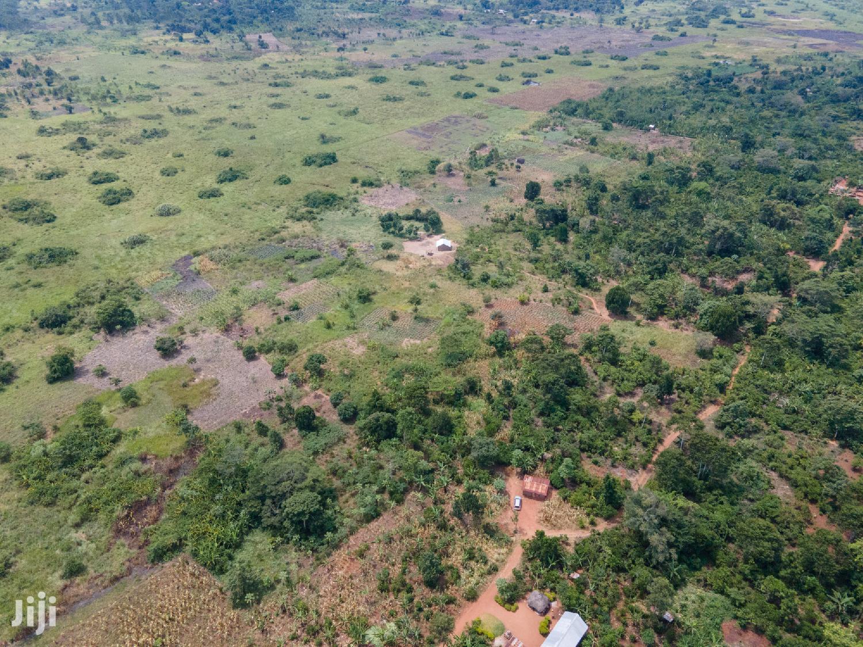 Farmland Land In Zirobwe Gayaza Road For Sale | Land & Plots For Sale for sale in Wakiso, Central Region, Uganda