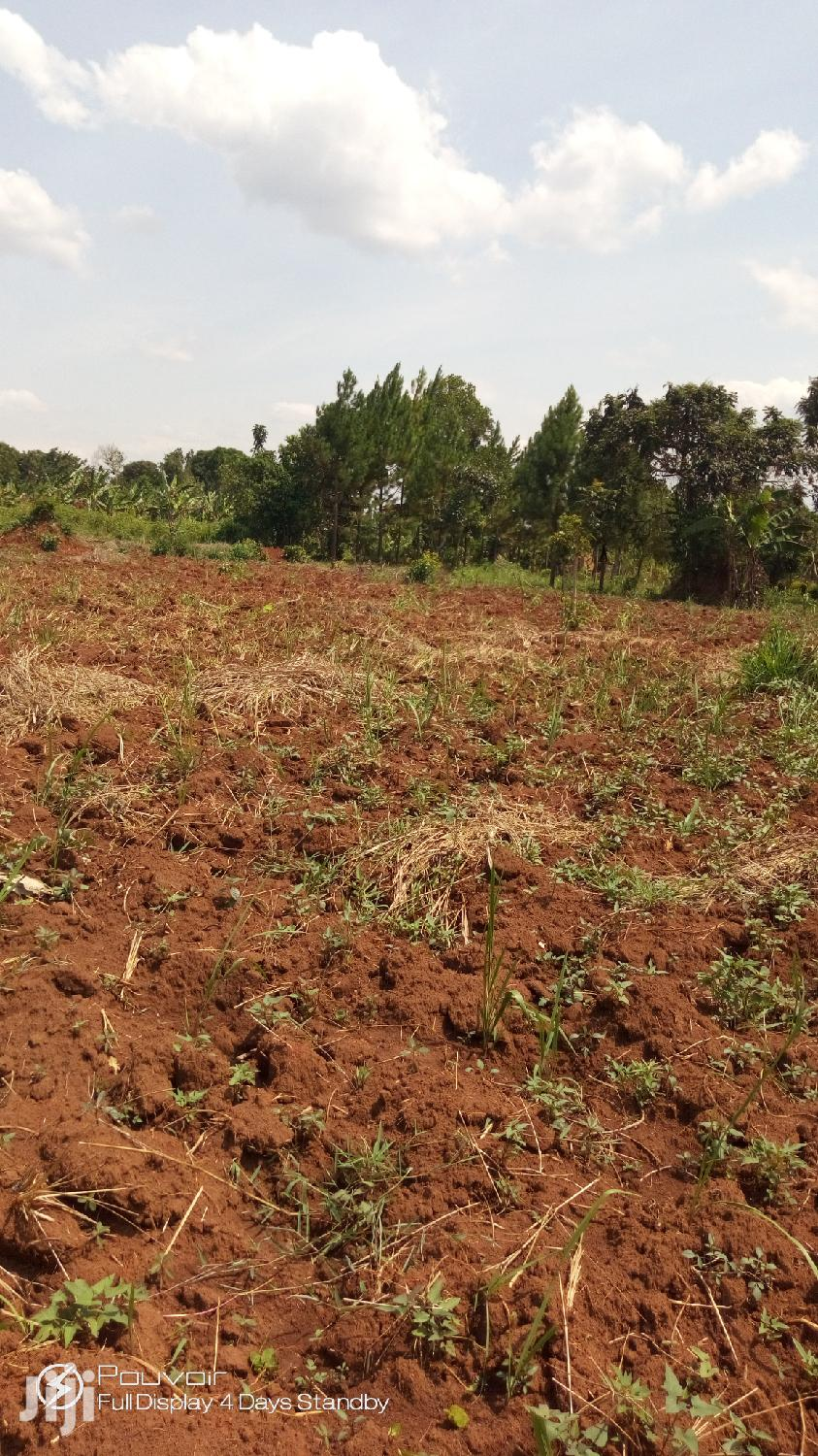 Archive: 1 Acre Land In Nakasajja For Sale