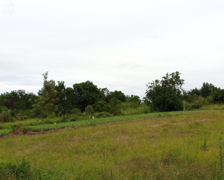 7 Acres of Land for Sale in Nkokonjeru Kyiyindi Katosi Road