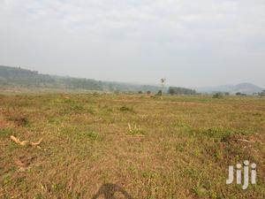 Good Residential Plots In Wakiso For Sale