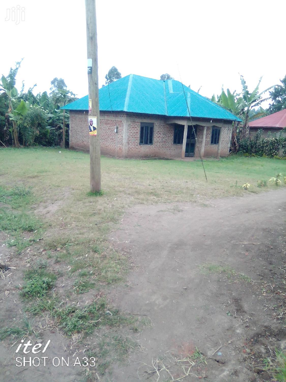 Archive: House With a Banana Plantation