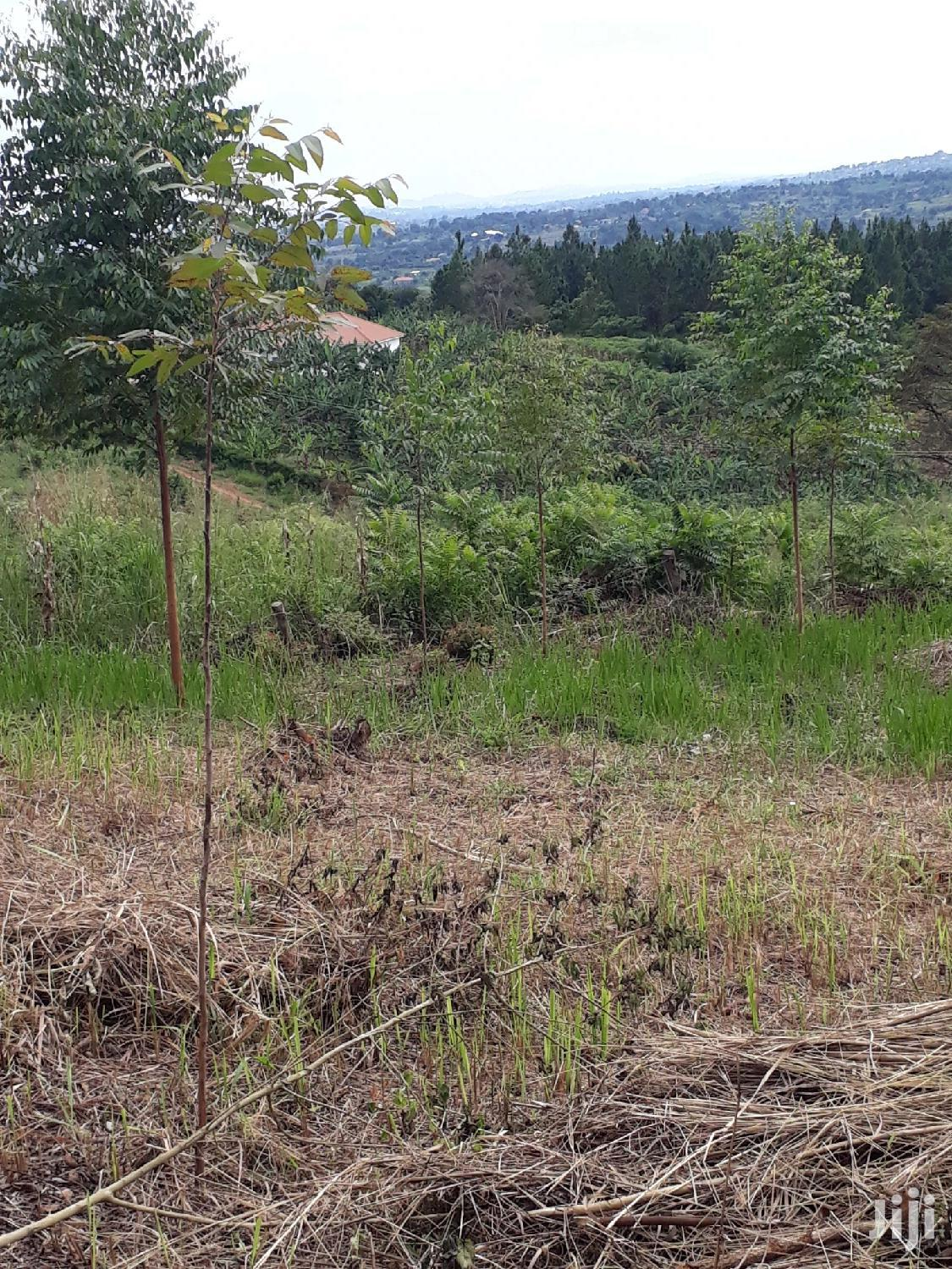 Archive: Plot In Gayaza Kiwenda For Sale