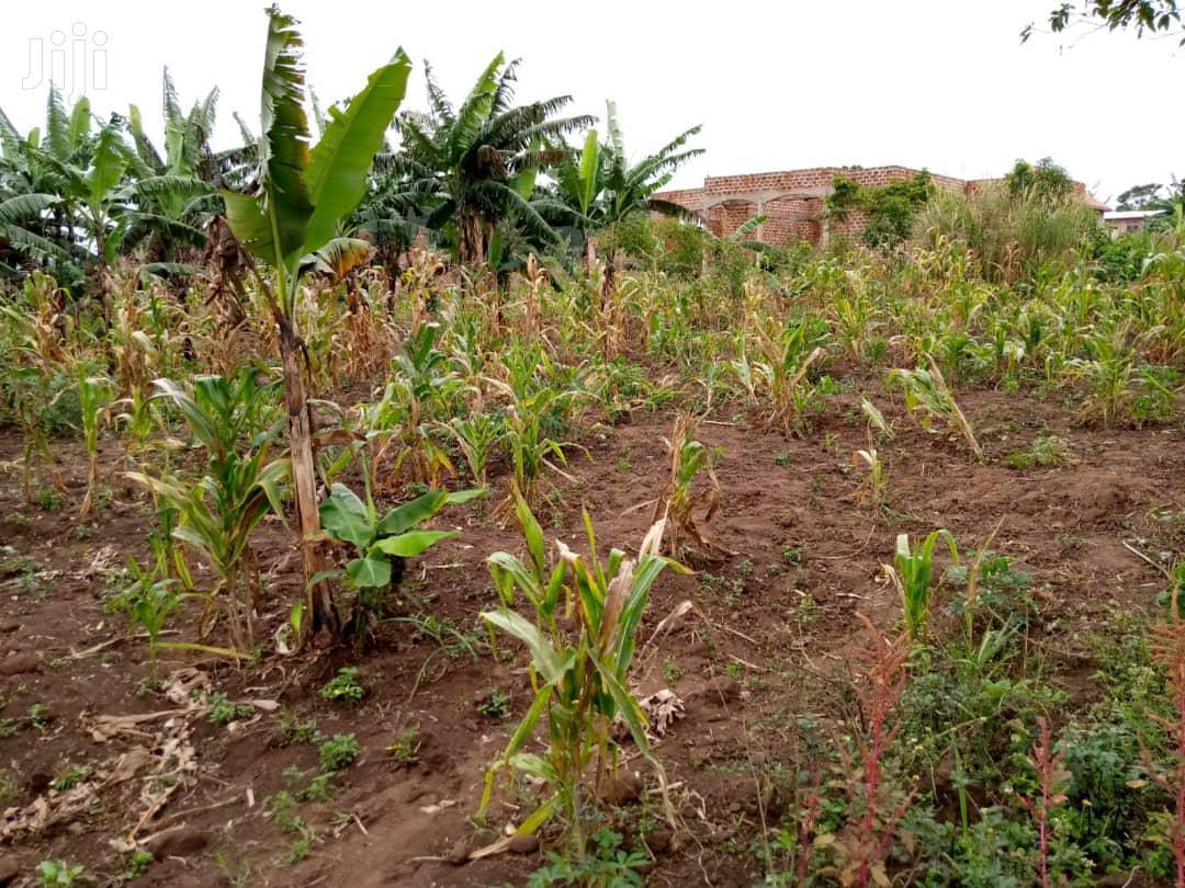 Plot In Matugga Kibungo For Sale