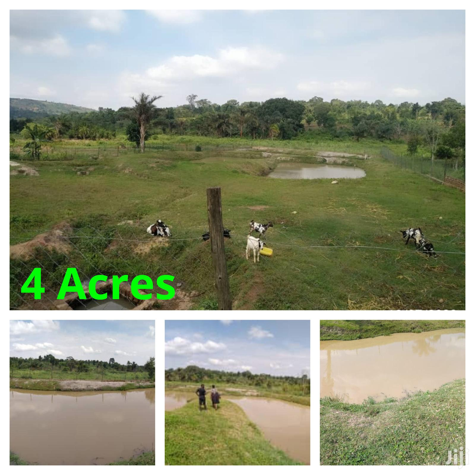 4 Acres of Farm Land | Land & Plots For Sale for sale in Wakiso, Central Region, Uganda