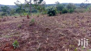 10 Acres Land In Bombo Kalule For Sale