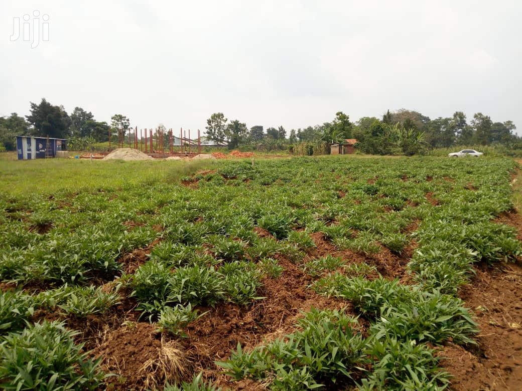 Plot for Sale in Gayaza Nakasajja | Land & Plots For Sale for sale in Kampala, Central Region, Uganda