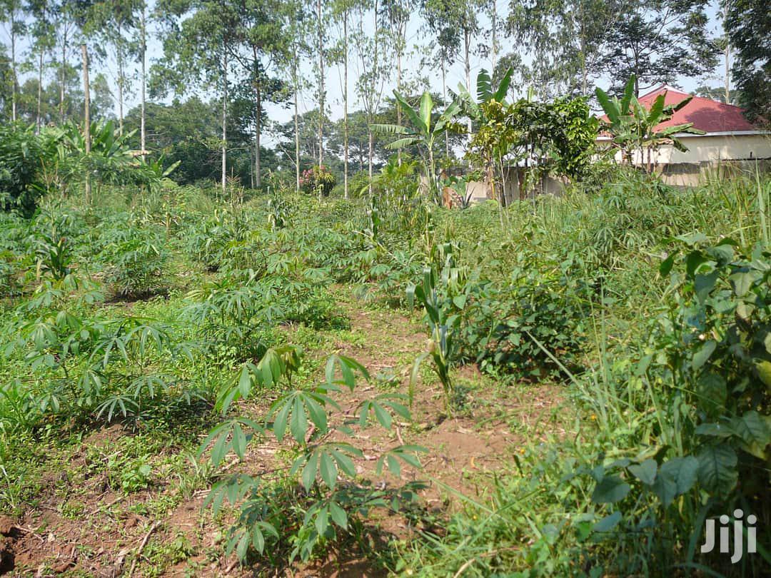 Plots For Sale In Mukono | Land & Plots For Sale for sale in Kampala, Central Region, Uganda